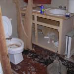 Sewer Damage