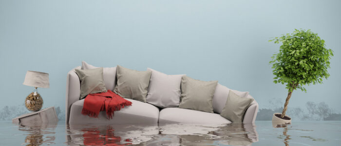 WATER DAMAGE: Did you experience water damage at your home?